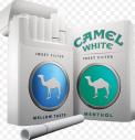 Camel_White